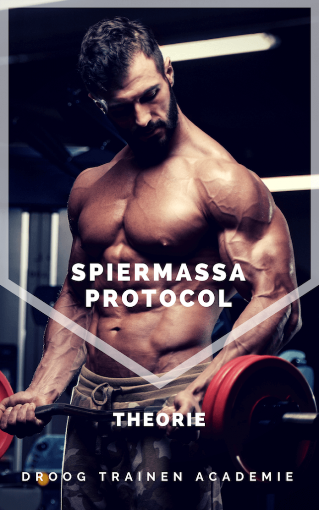 spiermassa protocol theorie boek