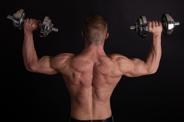 sterke rugspieren